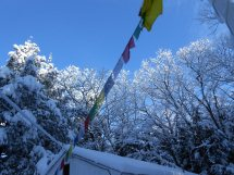 cottage and prayer flags